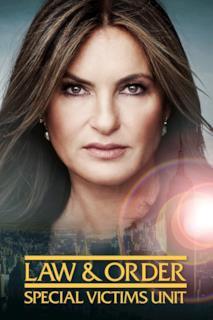 Poster Law & Order - Unità vittime speciali