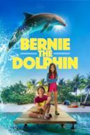Poster Bernie il Delfino