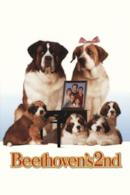 Poster Beethoven 2