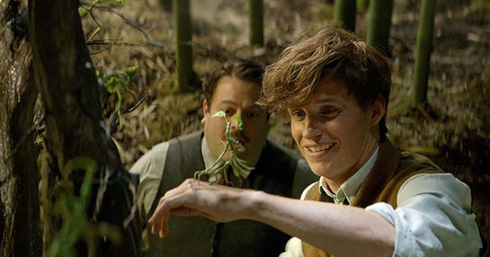 Una delle creature fantastiche di Scamander nel film