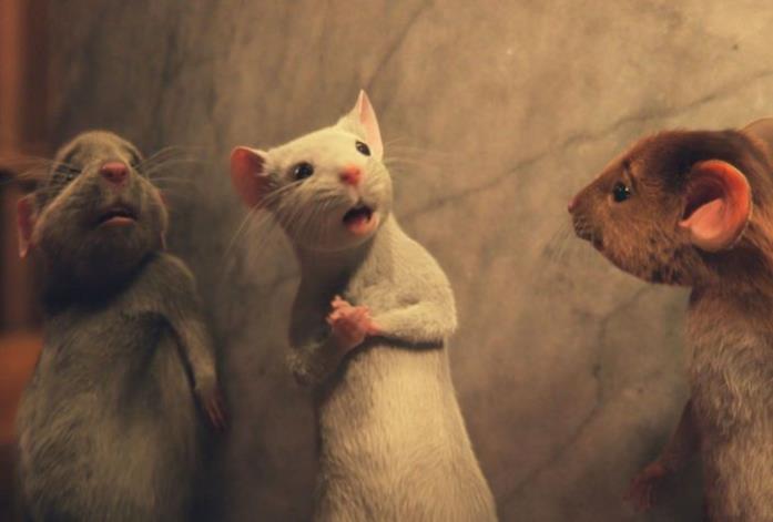 Gigia, la topolina bianca creata apposta per il film Le streghe