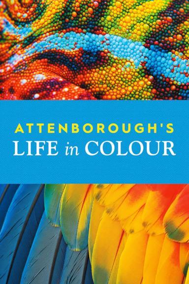 Poster David Attenborough: la vita a colori