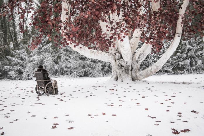 GoT 8: Bran nel Parco degli Dei a Grande Inverno