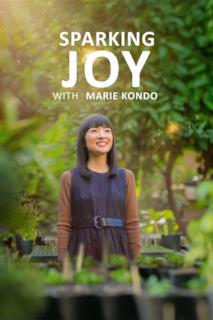 Poster Scintille di gioia