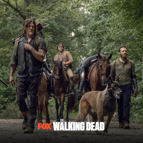 I nuovi episodi di The Walking Dead 9: Daryl e Aaron riportano Jesus a casa