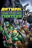 Poster Batman vs. Teenage Mutant Ninja Turtles