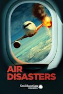 Poster Air Disasters