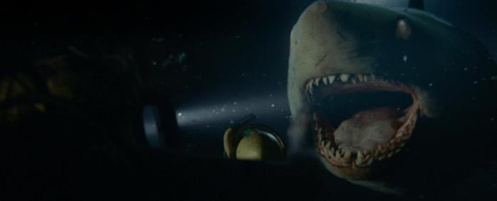 Lo squalo bianco del film 47 Metri - Uncaged