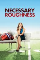Poster Necessary Roughness