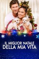 Poster Il miglior Natale della mia vita