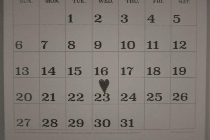 Il calendario in bianco e nero di Wanda e Visione