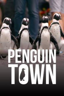 Poster Il villaggio dei pinguini