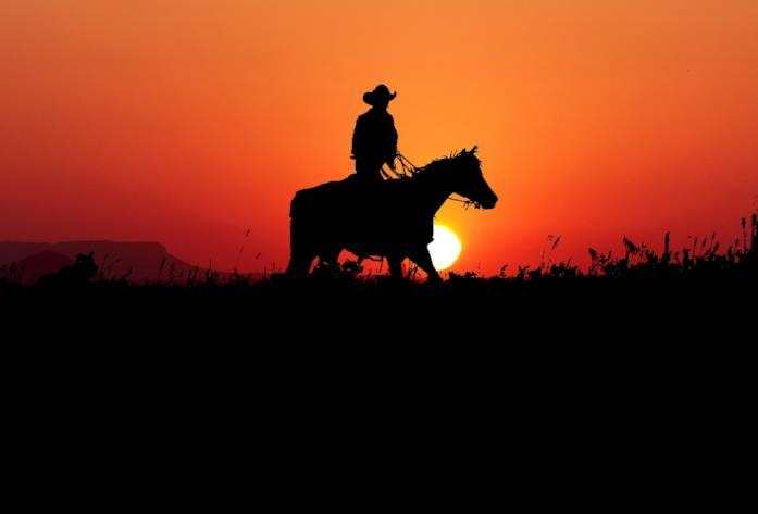 Un cowboy a cavallo