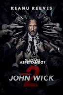 Poster John Wick - Capitolo 2