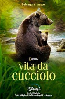 Poster Vita da cucciolo