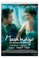Poster Mood Indigo - La schiuma dei giorni