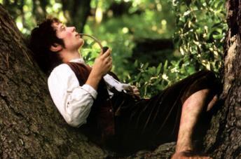 Elijah Wood è Frodo nella trilogia de Il Signore degli Anelli
