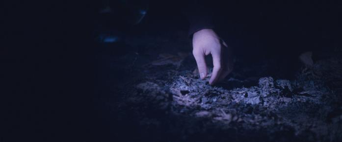 Everett illumina con la torcia il terreno
