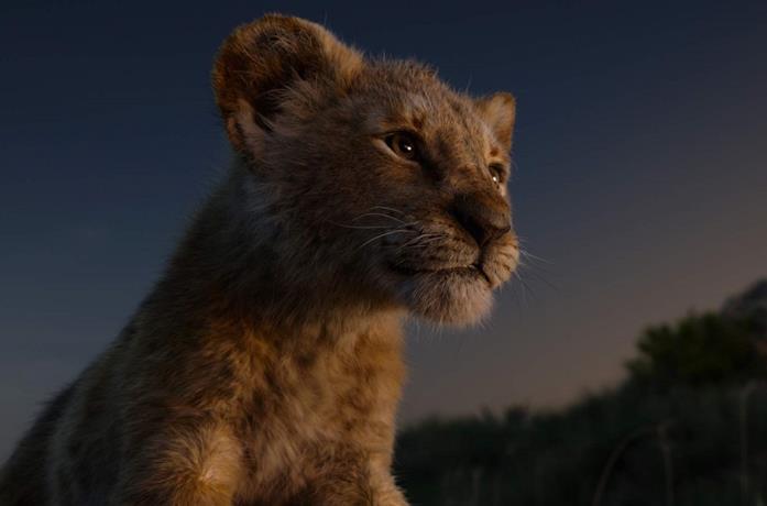 Un'immagine del film Disney Il re leone