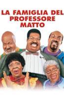 Poster La famiglia del professore matto
