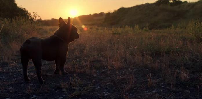 Ugo ritrova la libertà in una toccante sequenza sul far del tramonto