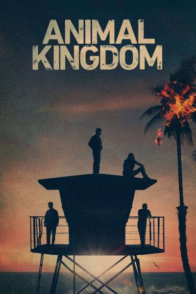 Poster Animal Kingdom