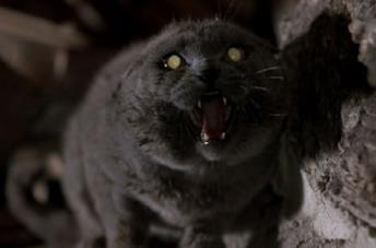Una scena del film Pet Sematary dell'89