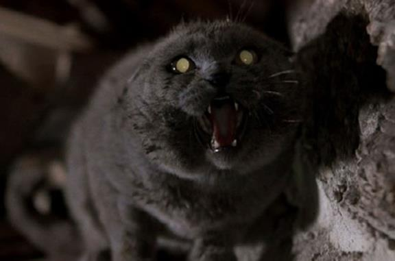 Una scena del film Pet Sematary dell'89
