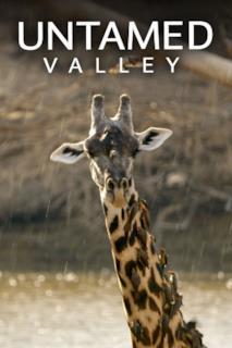 Poster Untamed Valley