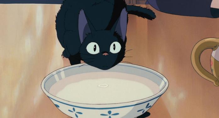 Jiji beve latte da una ciotola