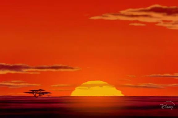 Zenimation: un'esperienza sensoriale in streaming su Disney+