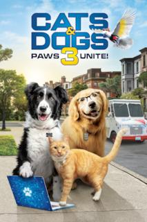 Poster Cani e gatti 3 - Zampe unite