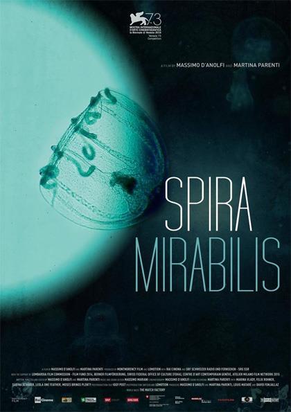 Spira Mirabilis, da Venezia ai cinema italiani