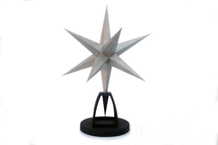 Un'immagine del premio Stella Mole