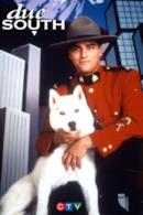 Poster Due South
