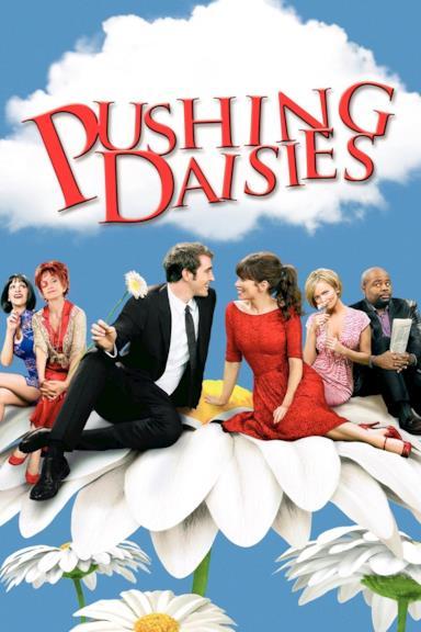 Poster Pushing Daisies