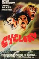 Poster Cyclone