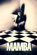 Poster Mamba