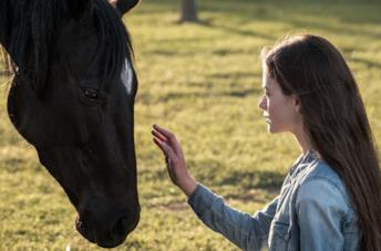 Black Beauty: Autobiografia di un cavallo, trailer e trama del film Disney