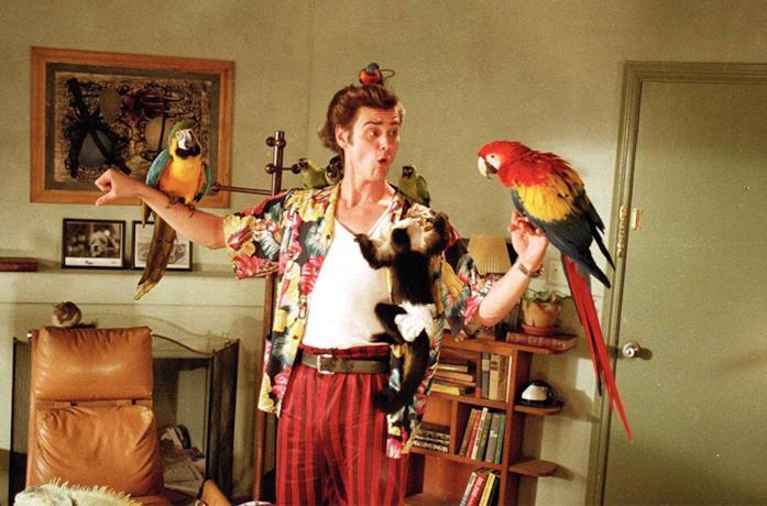 Jim Carrey è Ace Ventura