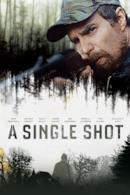 Poster A Single Shot