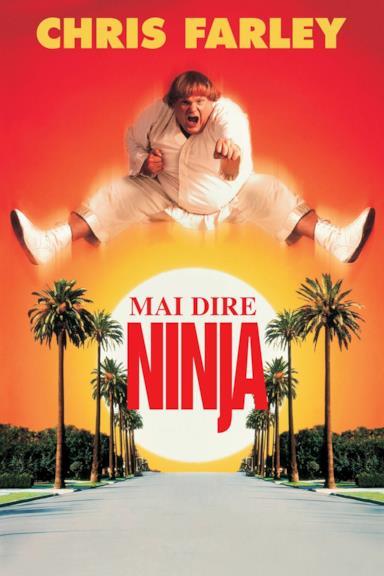 Poster Mai dire ninja