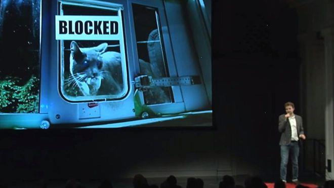 Ben Hamm presenta lo sportello elettronico per gatti