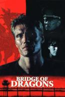 Poster Il ponte del dragone