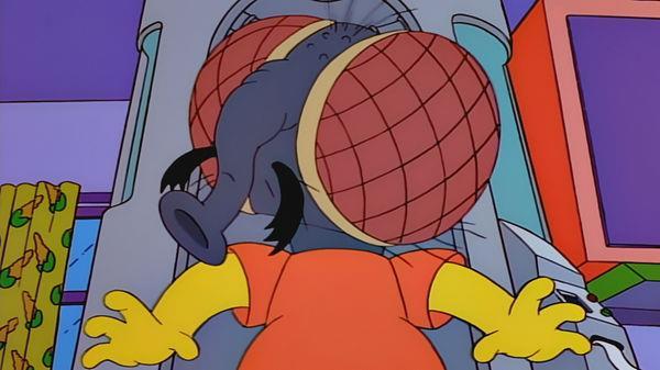 Bart si trasforma in una mosca nell'episodio 9x04 de I Simpson.
