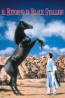 Poster Il Ritorno di Black Stallion