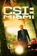 Poster CSI Miami