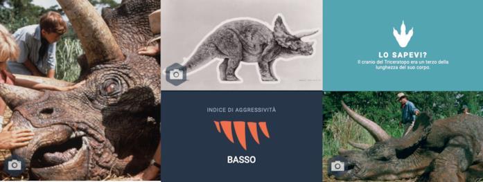 Immagini del Triceratopo