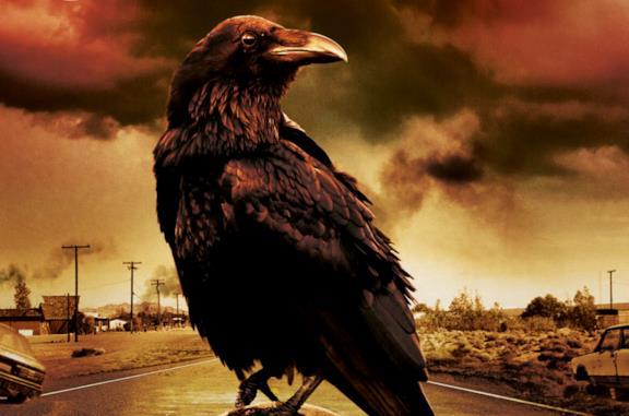 Il corvo di The Stand visibile sulla copertina del DVD della prima miniserie