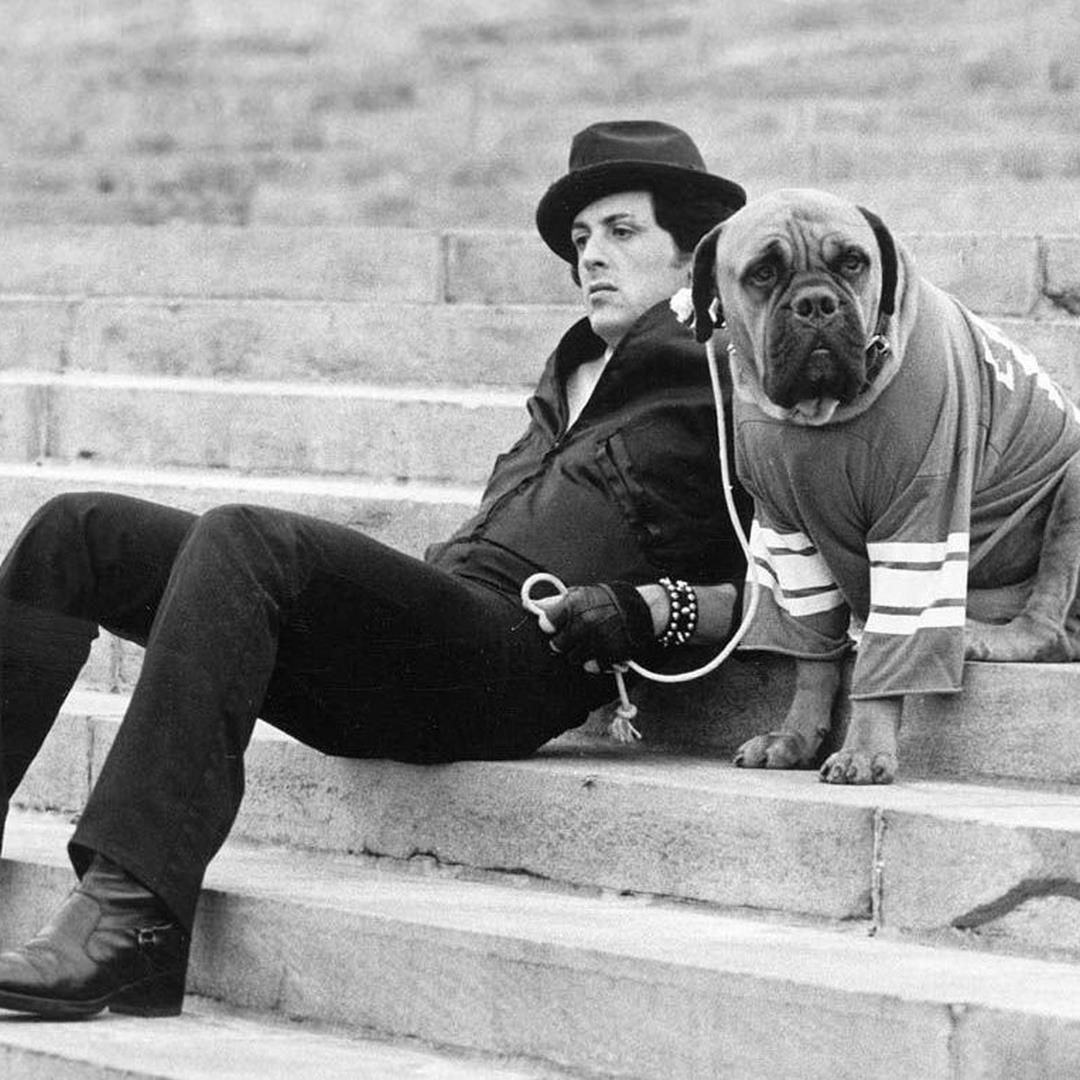 Frasi Celebri Rocky 6.Rocky Balboa Storia Curiosita E Frasi Dell Intramontabile Personaggio Di Stallone